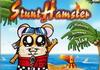 Game Stunt hamster
