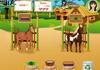 Game Horsecare apprenticeship