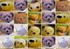 Game Teddy bear link