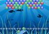 Game Dolphin ball 2