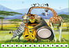 Game Madagascar hidden letters