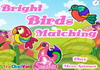 Game Bright birds matching