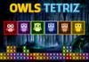 Game Owls tetriz