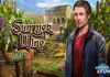 Game Summer wine
